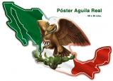 Poster Aguila Real   #P1076